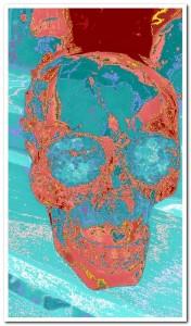 Crystal skull2D