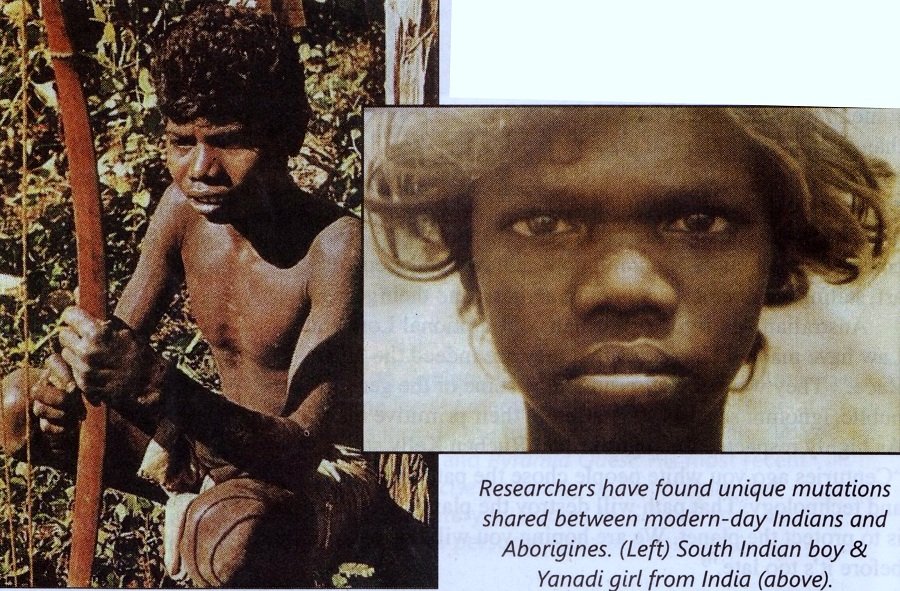 4) Dravidian- Tamil Genetic Link to Australia - Copy